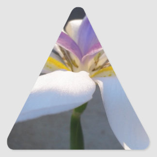 A magnificient Lily .jpg Triangle Sticker