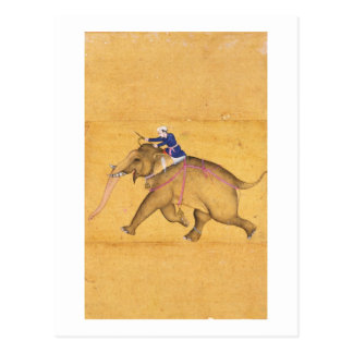 A Mahout riding an Elephant, from the Large Clive Postcard