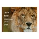 A Majestic lion Business Card