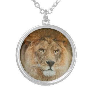 A Majestic lion Round Pendant Necklace