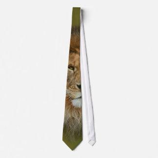 A Majestic lion Tie