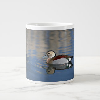 A Male Blue Billed Ringed Teal Swims in a pond Large Coffee Mug