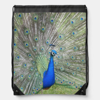 A Male Indian Peacock Fans it's tail Feathers Drawstring Bag