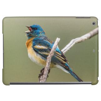 A Male Lazuli Bunting Songbird Singing Case For iPad Air