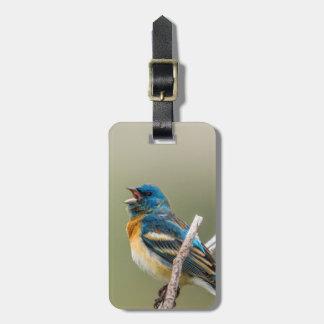 A Male Lazuli Bunting Songbird Singing Luggage Tag