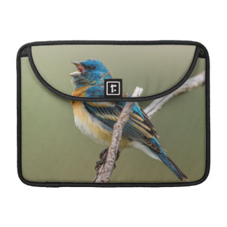 A Male Lazuli Bunting Songbird Singing Sleeve For MacBooks
