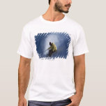A male snowboarder catches last light on a T-Shirt