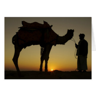 a man and his camel Silhouetted at sunset on the Greeting Card