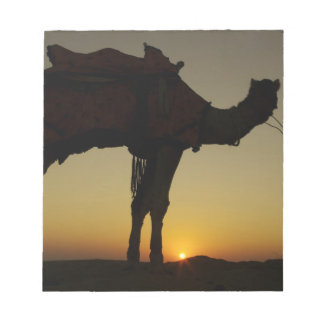 a man and his camel Silhouetted at sunset on the Notepad