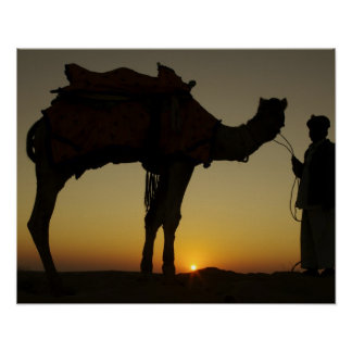a man and his camel Silhouetted at sunset on the Poster
