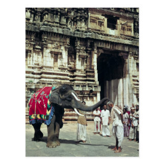A man being blessed by an elephant postcard