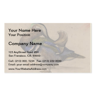 A Mandarin drake by Eugene Delacroix Double-Sided Standard Business Cards (Pack Of 100)