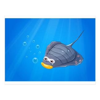 A manta ray under the sea postcard