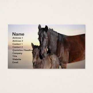A mare and her baby foal business card