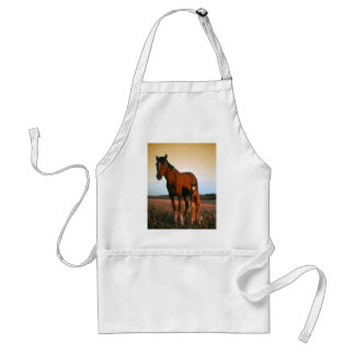 A mare and her foal aprons