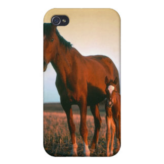 A mare and her foal iPhone 4 cover