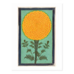 A Marigold, from the Small Clive Album (w/c on pap Postcard