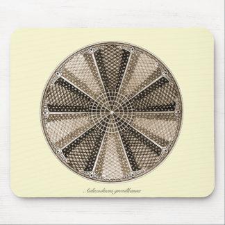 A Marine Diatom Mouse Pad