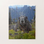 A marmot in Paradise in Mount Rainier National Par Jigsaw Puzzle
