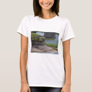 A Maumee Tapestry T-Shirt