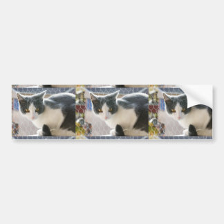 A Max And Mantle Bi Colour Cat Bumper Sticker