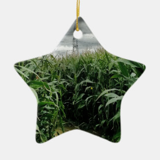 A maze of maize Double-Sided star ceramic christmas ornament