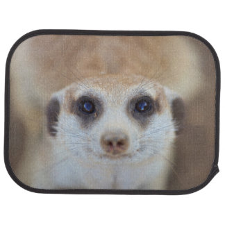 A Meerkat looking up at the camera Car Mat