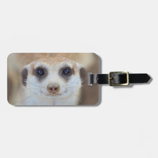 A Meerkat looking up at the camera Luggage Tag