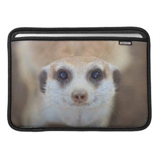 A Meerkat looking up at the camera MacBook Sleeve