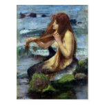 A Mermaid (study) Post Cards