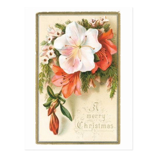 A Merry Christmas Flower Postcard