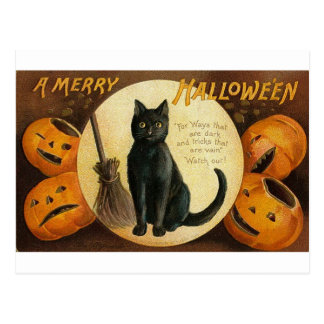 A Merry Halloween Cat Card
