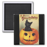 A Merry Halloween, Vintage Black Cat in Pumpkin 2 Inch Square Magnet