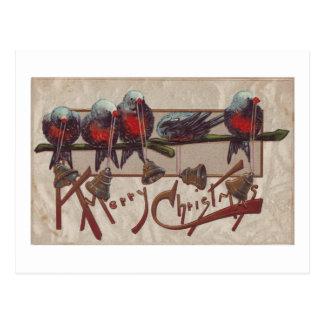 A Merry Xmas Birds Postcard