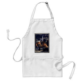 A Message from America Adult Apron