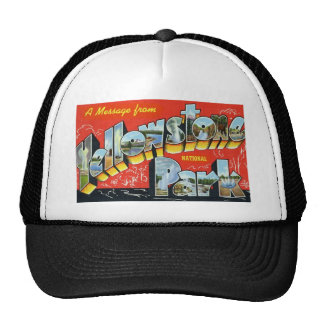 A Message from Yellowstone National Park Mesh Hat