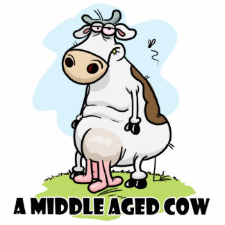 A Middle aged Cow Cut Out