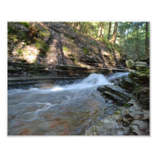 A MIDSPRING'S EVENING AT THE STREAM PHOTO