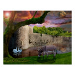 donkey, swans, bishops, palace, water, trees, oak,