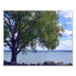 A MIDSUMMER'S AFTERNOON AT THE LAKE. PHOTO