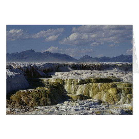 A mineral flow in Yellowstone. Card