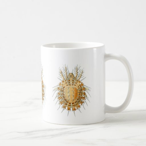 A Mite Classic White Coffee Mug