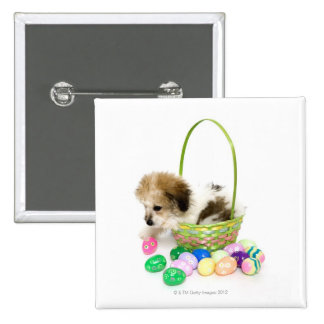 A mixed breed puppy sitting in an Easter basket 2 Inch Square Button