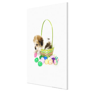 A mixed breed puppy sitting in an Easter basket Canvas Print