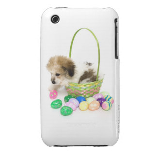 A mixed breed puppy sitting in an Easter basket iPhone 3 Cases