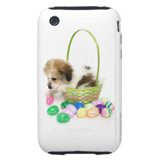 A mixed breed puppy sitting in an Easter basket Tough iPhone 3 Case