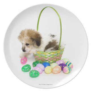 A mixed breed puppy sitting in an Easter basket Plate