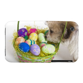 A mixed breed puppy sniffing at an Easter basket Case-Mate iPhone 3 Cases