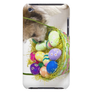 A mixed breed puppy sniffing at an Easter basket iPod Case-Mate Case