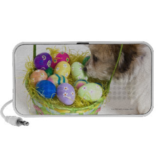 A mixed breed puppy sniffing at an Easter basket Speaker